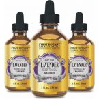 First Botany Kashmir Lavender Essential Oil with a Glass Dropper – 100% Natural – Use in Aromatherapy, Massage, Hair Care and Skin Care, Bug Repellent & Acne Treatment