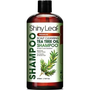 Shiny Leaf Tea Tree Oil Shampoo; Gets Rid of Flakes and Head Lice; Cleanses Scalp Deeply